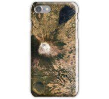 San Miguel Volcano El Salvador Satellite Image iPhone Case/Skin