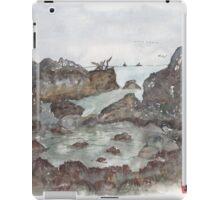 Tide pools iPad Case/Skin
