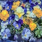 Monet's Pansies by PhotosByHealy