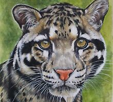 Berry's Clouded Leopard by BarbBarcikKeith