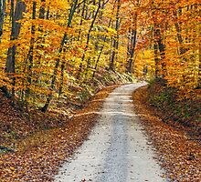 Country Road and Fall Colors by Kenneth Keifer