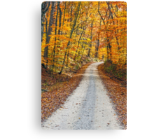 Country Road and Fall Colors Canvas Print