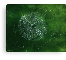 Spider Web with Spider, painting Canvas Print