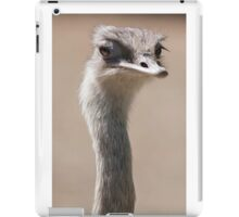 ostrich in the farm iPad Case/Skin