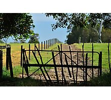 farm gate Photographic Print