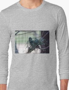 bird on the meadow Long Sleeve T-Shirt