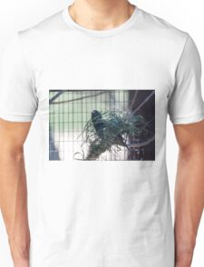 bird on the meadow Unisex T-Shirt