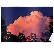 Way Up High On The Pink Clouds In The Sky Poster