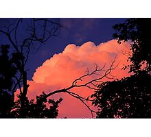 Way Up High On The Pink Clouds In The Sky 1 Photographic Print