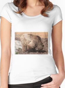 bear in the zoo Women's Fitted Scoop T-Shirt