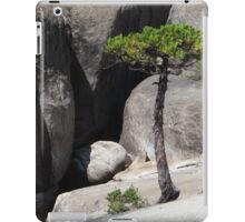 Tree and Rocks iPad Case/Skin