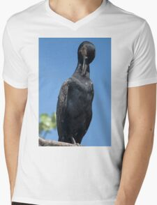 flamingo Mens V-Neck T-Shirt
