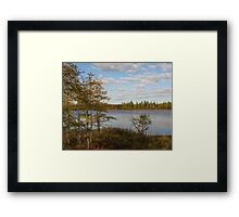 A Walk With A View Framed Print