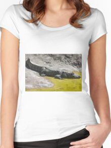 crocodile at the zoo Women's Fitted Scoop T-Shirt