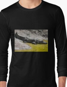 crocodile at the zoo Long Sleeve T-Shirt
