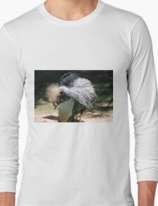 hoopoe on the farm Long Sleeve T-Shirt