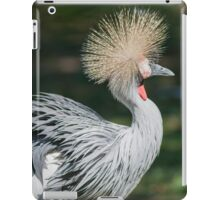 hoopoe on the farm iPad Case/Skin