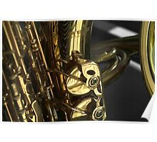 Sax and French Horn Poster