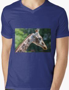 giraffe at the zoo Mens V-Neck T-Shirt