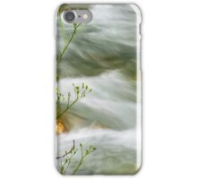 On The Bank iPhone Case/Skin