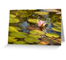Floating Lilly Greeting Card