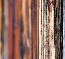 Vertical Wooden Pattern by Norbert Karpen