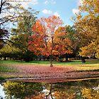 Reflection of Fall by Dan Dexter