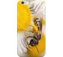 Sweat Bee Collecting Pollen iPhone Case/Skin