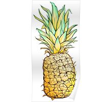Isolated colorful image of pineapple. Poster