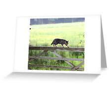 Fence walking Greeting Card