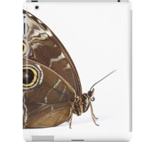 Owl Eye Butterfly Macro iPad Case/Skin
