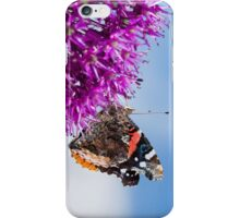 Red Admiral Butterfly on Allium Flower iPhone Case/Skin