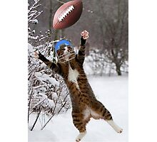 Meow Down Photographic Print