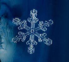 Blue Ice Snowflake by Dan Dexter