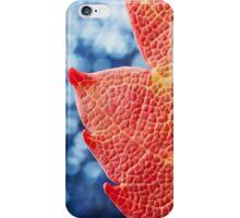 Fall Maple Leaf iPhone Case/Skin