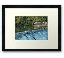 Heron Looking towards the Future Framed Print