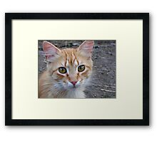 I know what you think about Framed Print