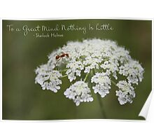 Nothing Is Little Poster