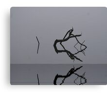 Adrift in Fog, without Direction Canvas Print