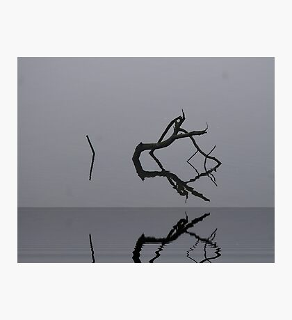 Adrift in Fog, without Direction Photographic Print