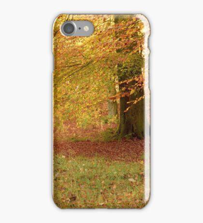 Brock bottom pano iPhone Case/Skin