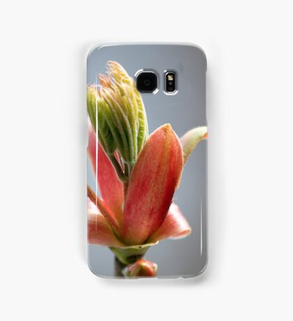 Budding Maple - Memories of Spring Samsung Galaxy Case/Skin