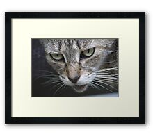 Come One Step Closer... Framed Print
