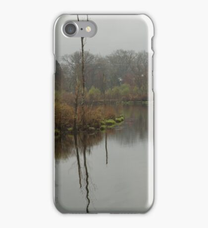 New England Swamp iPhone Case/Skin