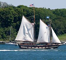 Tall Ship Sailing Past Newport, RI by Barry Doherty