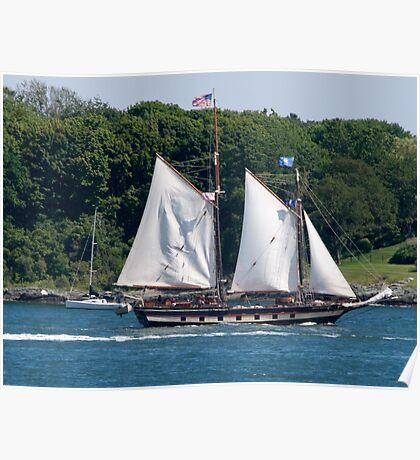 Tall Ship Sailing Past Newport, RI Poster