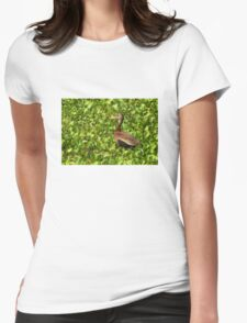Black-bellied Whistling-Duck Womens Fitted T-Shirt