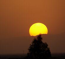 Sunset at Sahara desert by Panayiotis Zavros