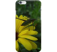 Little bugger iPhone Case/Skin
