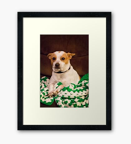 Handsome Framed Print